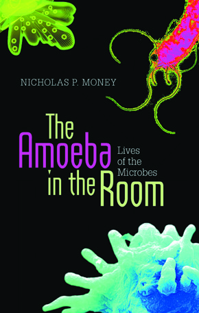 The_Amoeba_in_the_Room_290
