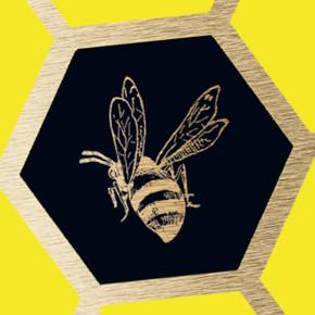 Laline Paull's hive society