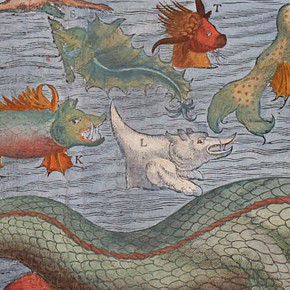 Here be sea monsters