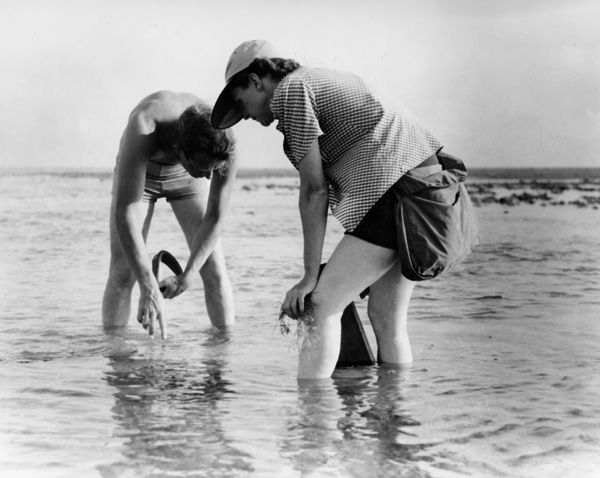 Rachel Carson and Bob Hines conducting research off the Atlantic coast in 1952. FSW/Wikimedia Commons