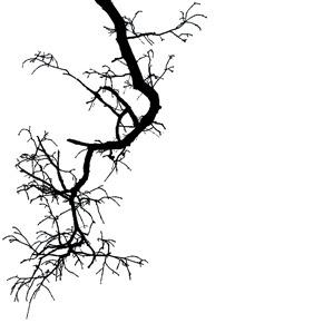 Nature, faith and horror