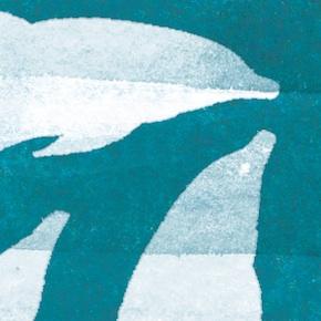 The dolphin children