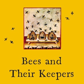 Bees can teach us a great deal – but what?
